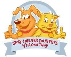 February is National Spay/Neuter Awareness Month