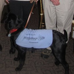 Leader Dog , Jasmine, presents at Leonardtown Lions Club