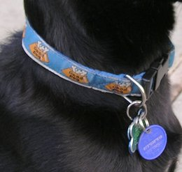 Tags and licensing required for pets
