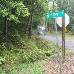 The Curse of Moll Dyer: A Local Urban Legend...or is it?