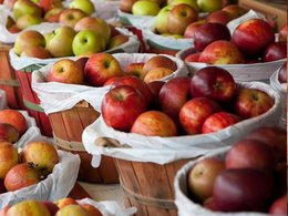 St. Mary's County Public Schools to celebrate fresh, healthy foods
