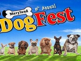 Reminder: Get your DogFest tickets for this weekend!