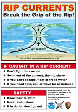Dr. Lipoff: Why you need to learn to swim and understand rip currents